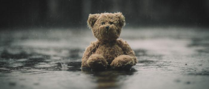 soggy teddy